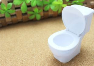大阪で飲食店のメニュー・販促物の制作は「おいしいデザイン.com」 トイレの真面目なおはなし イメージ画像